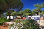 Establishment Camping Cabopino - Marbella