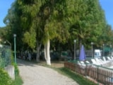 Pitch - Pitch - Villaggio Camping Costa d'Argento