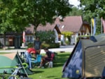 Establishment Aktiv Camp Purgstall Camping- & Ferienpark - Purgstall