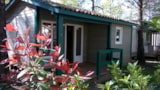 Rental - CHALET FUSTER 28 m² - Camping les Peupliers