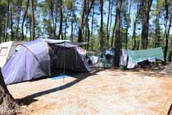 Emplacement - Emplacement En Camping - Camping Bois Simonet