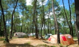 Pitch - Camping pitch - Camping Bois Simonet