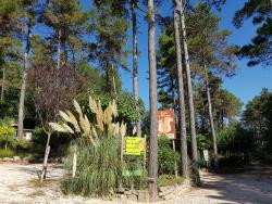 Services & amenities Camping Les Pins D'ucel - Ucel