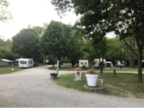 Pitch - Forfait Emplacement Camping - Camping Les Acacias
