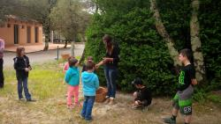 Leisure Activities Camping Le Sous-Bois - St Maurice D'ibie