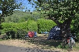Pitch - Pitch +Car + 2 People (Optional Electricity) - Camping Les Cerisiers du Jaur