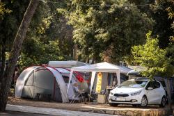 Camping Place Standard - Pitch: Car + Caravan/Tent Or Camper + Electricity