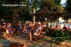 Entertainment organised Camping Park Soline - Biograd Na Moru