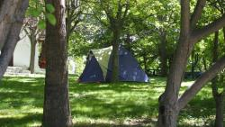 Shaded Pitch : Vehicle + Tent/Caravan Or Camping-Car
