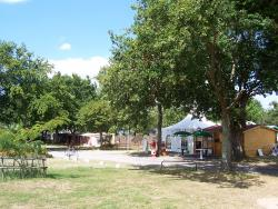 Establishment Camping Le Grand Fay - St Pere En Retz