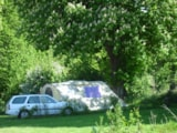Pitch - Close to Nature Pitch (Pitch 230 m² with tap water, 1 vehicle, without electricity) - Camping Sites et Paysages LE CLOS CACHELEUX