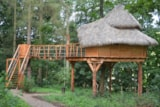 Rental - Treehouse Romantic 2 Angels - Camping LE CLOS CACHELEUX