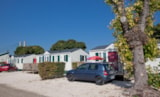 Rental - Mobile-home Louisiane ZEN 2006 32m² - 3 bedrooms - Camping du Pont de Bourgogne