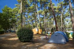Pitch - Pitch Premium + Vehicle - Camping Sunêlia Les Oyats
