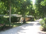 Pitch - Comfort Package (1 tent, caravan or motorhome / 1 car / electricity 6A) - Camping Lou Comtadou