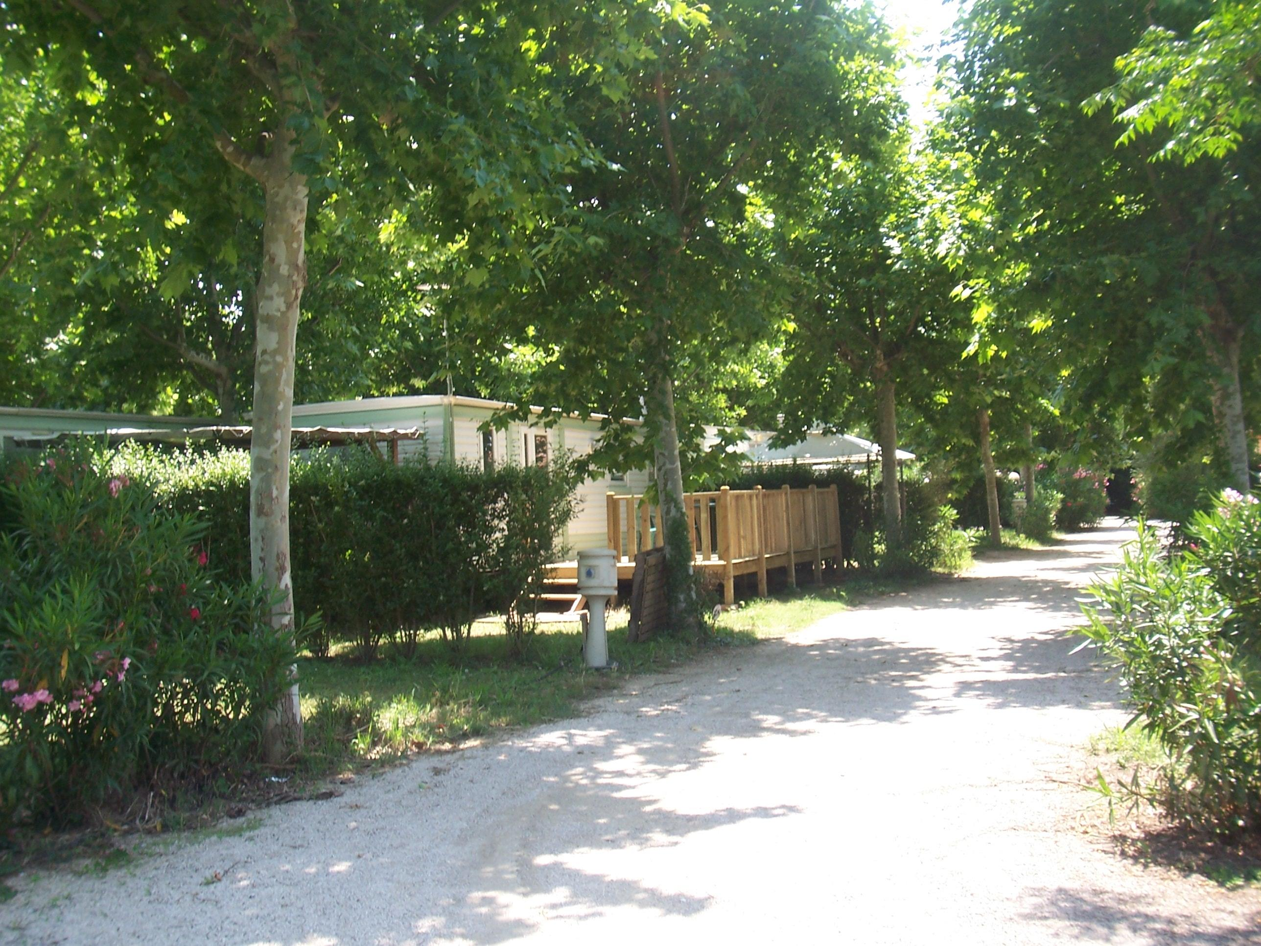 Etablissement Camping Lou Comtadou - Carpentras
