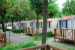 Rental - Mobile-home Classic - with air-conditioning - Campeggio del Sole