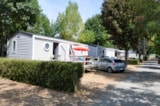 Rental - Mobile-home Family 29m² PREMIUM - 3 bedrooms - Flower Camping L'Abri-Côtier