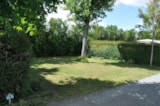 Pitch - Privilege Package (1 tent, caravan or motorhome / 1 car / electricity 16A) with TV access - Flower Camping L'Abri-Côtier
