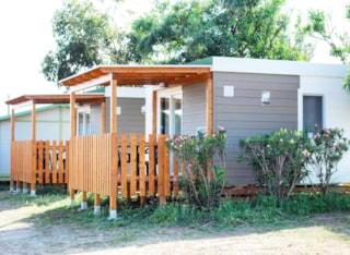 Mini Suite Aloe With Equipped Kitchenette