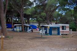 Allotjaments - Roulotte S'ena Arrubia - Village Camping S'Ena Arrubia