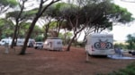 Emplacement - Pitch all inclusive - Village Camping S'Ena Arrubia