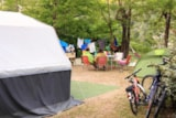 Pitch - Package 2 people + car + tent or caravan - Camping les Actinidias