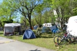 Pitch - Package 2 people + car + tent or caravan + electricity - Camping les Actinidias