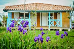 Location - Grand Chalet Premium - Camping Chadeyron