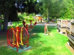 Sport activities Camping Jp Vacances - Le Tholy