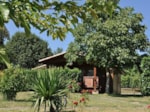 Rental - Chalet adapted to the people with reduced mobility - Camping Midi Pyrénées