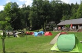 Pitch - Pitch with car + tent/caravan - Au Bois de Calais