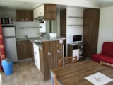 Rental - Mobile home APOLLON RIVIERA 40 m² (3 bedrooms - 2 bathrooms) - covered terrace of 18 m² - CAMPING LA BASTIDE
