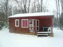 Rental - Wooden Chalet (4.80 x 7.30 m) + covered wooden terrace - Camping du Domaine de Maillac