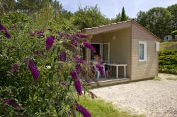 Rental - Cottage 2 rooms with panoramic view - Camping LES TERRASSES DU PERIGORD