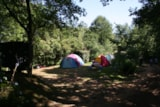 Pitch - Package:  Pitch Nature (N°1 À 8) 80 Till 120M2 + Electricity - CAMPING LES VALADES