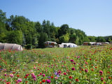 Pitch - Luxury Package XL location 200m2 with 13m2 terrace + fridge + picnic table + water + electricity - CAMPING LES VALADES