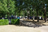 Pitch - Package:  Pitch Forest (N°9 À 40) 80 Till 120M2 + Electricity - CAMPING LES VALADES