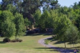 Pitch - Package:  Pitch Forest 80 till 120m2 + electricity - CAMPING LES VALADES