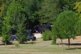 Pitch - Package:  Pitch Lake/Swimming Pool (N°54 À 62) 80 Till 130M2 + Electricity - CAMPING LES VALADES