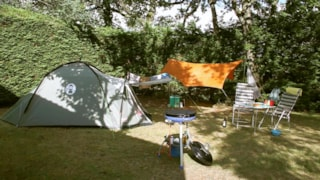 Pitch + Tent Or Caravan