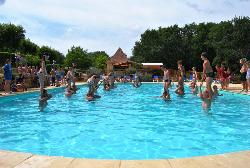 Entertainment organised Camping Domaine de Fromengal - Le Buisson de Cadouin