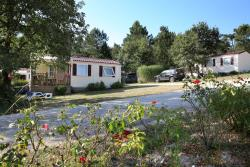 Rental - New mobile home 2 bedrooms 30m²- LODGE, New : 2 sunchairs included, Arrival Sunday - Camping Sites et Paysages DOMAINE DE L'ÉTANG DE BAZANGE