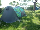 Pitch - Pitch Standard without electricity - Camping UR-ONEA