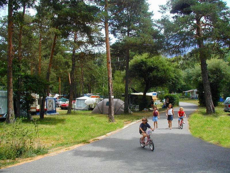 Emplacement - Emplacement - Camping Saint-James Les Pins
