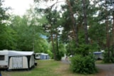 Pitch - Pitch - Camping Chalets Résidentiels SAINT JAMES LES PINS