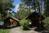 Rental - Country Cottage 'Leisure' - Camping Chalets Résidentiels SAINT JAMES LES PINS