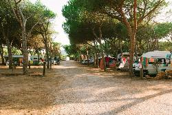 PIAZZOLA PER ROULOTTE + 1 PARKING
