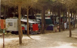 Caravan To Rent With Private Facilities