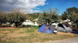 Pitch - Simple pitch with electricity (tent) - Camping Sunêlia L'Hippocampe